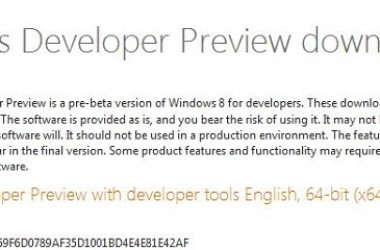 Windows 8 Developer Preview Available For Free Download