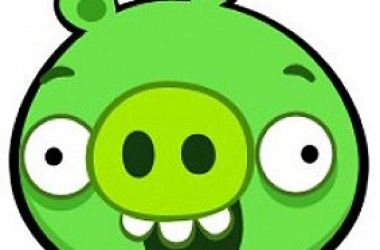 Bad Piggies: The New Angry Bird Game