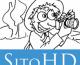 SitoHD Windows Phone App Review: Explore Amazing Photography Websites!