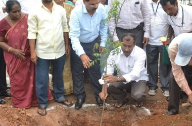 Gangavaram Port Celebrates World Environment Day 2015