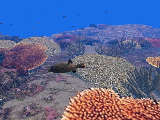 underwater enviornment