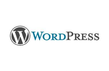 Got New WordPress Site? – Web hosting Options Designed For WordPress