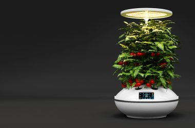 Agro2o Launches Smart Gardens with Combines Nature and Technology